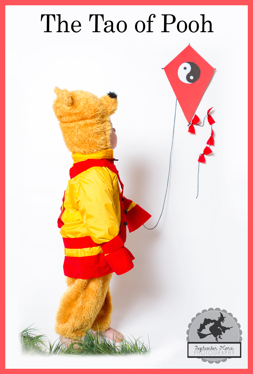 tao-of-pooh-costume