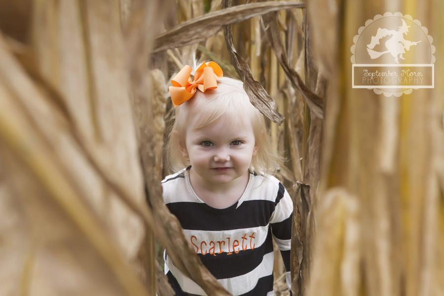 pumpkin3swmt(web)