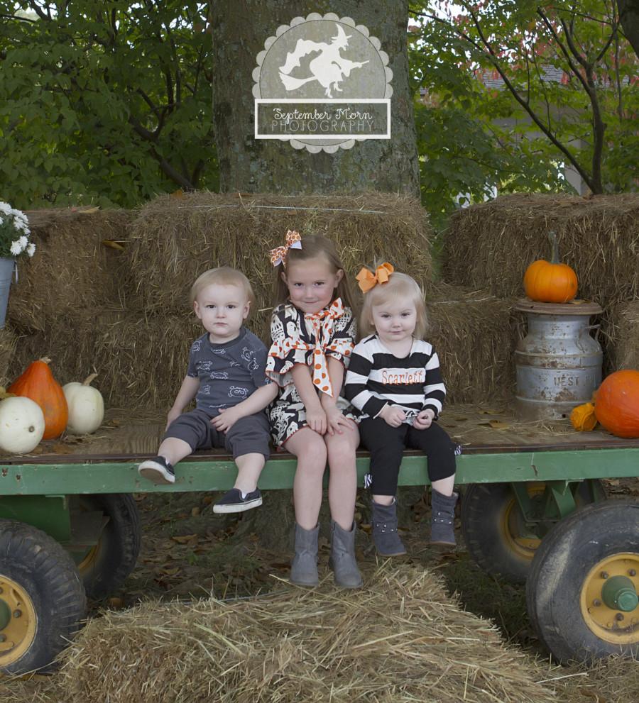 pumpkin(web)