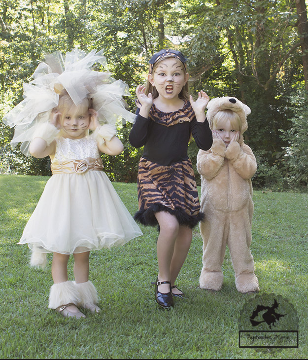 Diy Lion Costume Stellaween